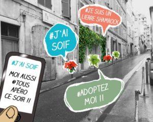 Association Mon Jardin dans ma rue pour jardiner en ville