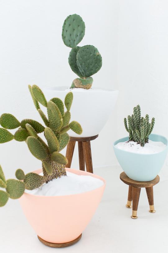 jardiner en ville - DIY - pot – intérieur