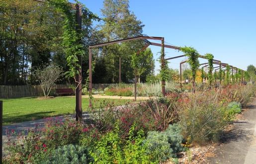 jardin - ville - bordeaux - parc