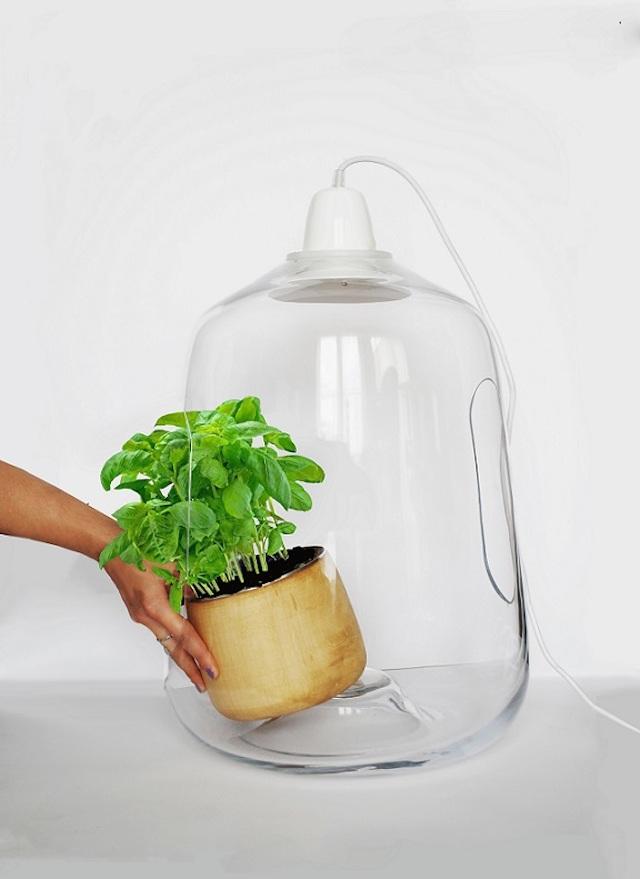 lightovo - lampe - plante - jardiner en ville