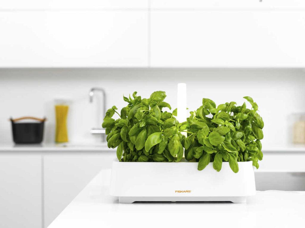 potager - intérieur - sélection - indoor - garden - jardiner en ville