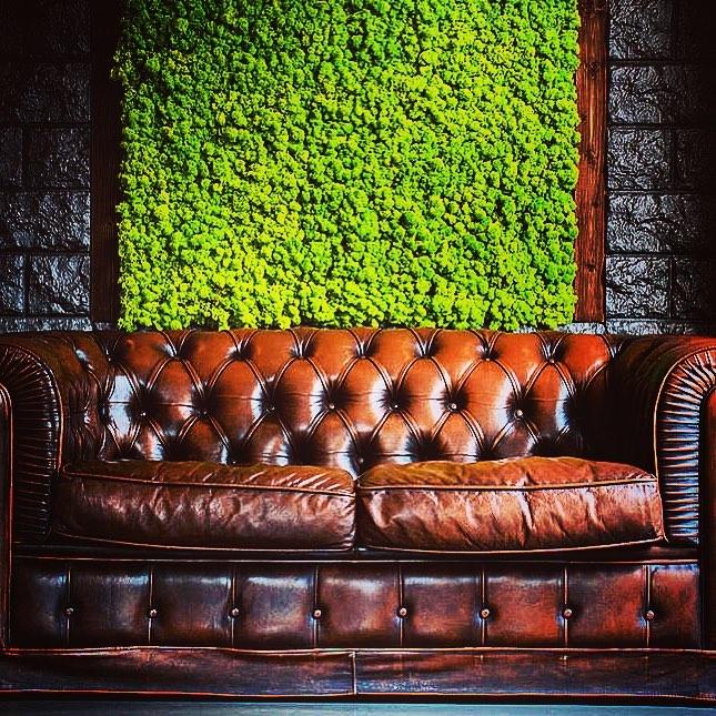 déco - végétaux - végétal - nouveauté - jardiner en ville - lampe - mur - original - mur végétal