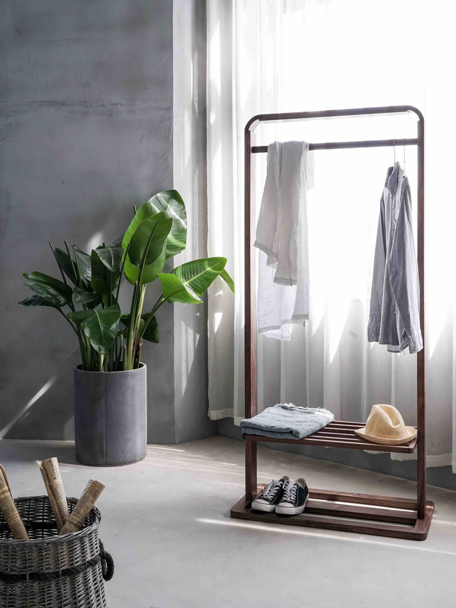 plante - plantes - chambre - choisir - verte - intérieur