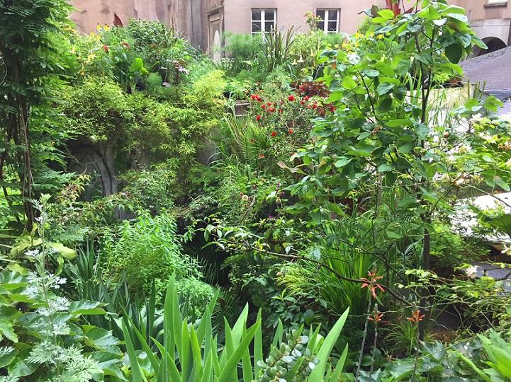 evor-jungle intérieure-nantes-voyage à nantes- été-nature-plantes-échanges