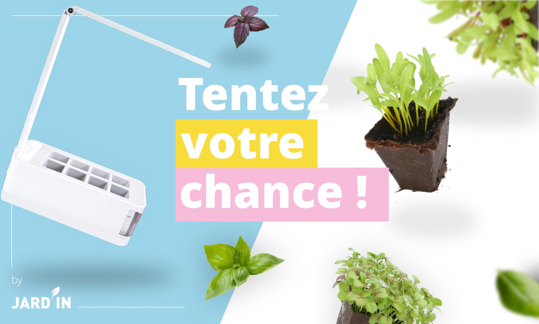 octopousse - concours - jard'in - jardiner en ville - potager - intérieur - LED