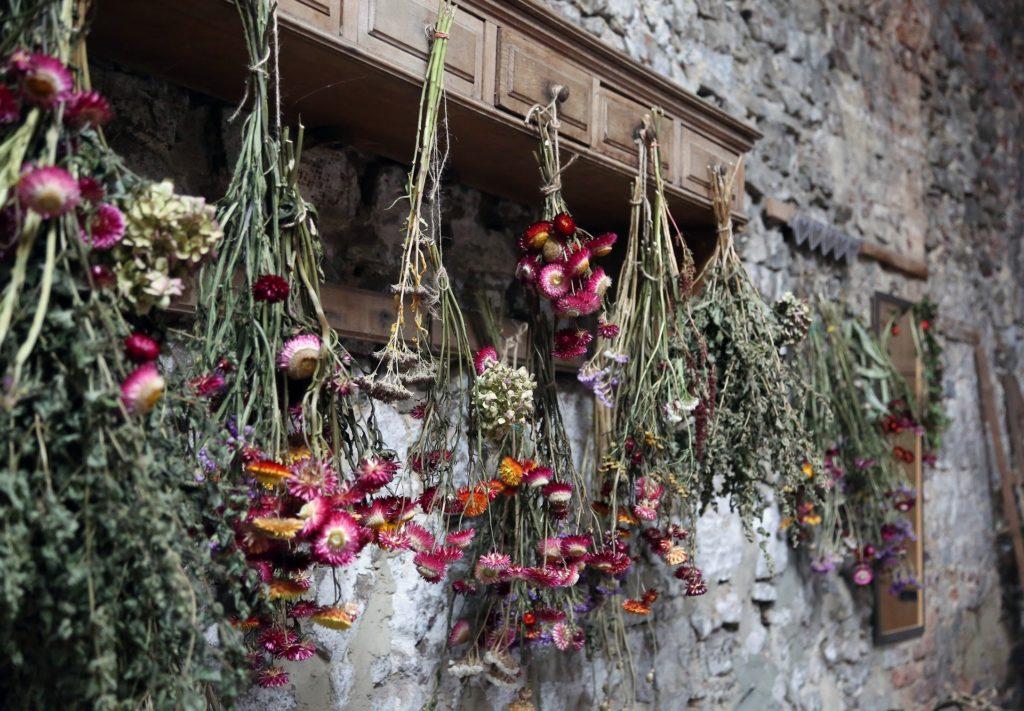 dried-flowers-Unsplash